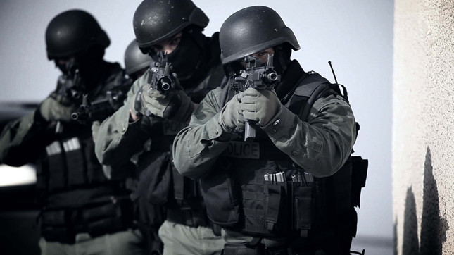 Canadian swatter pleads guilty to 23 charges of extortion and criminal harassment
