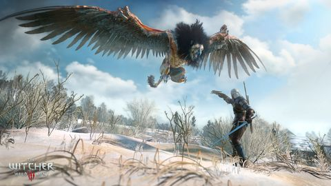 All the world's a stage in The Witcher 3: Wild Hunt